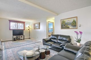Photo 13: 110 11 Dover Point SE in Calgary: Dover Apartment for sale : MLS®# A1096781
