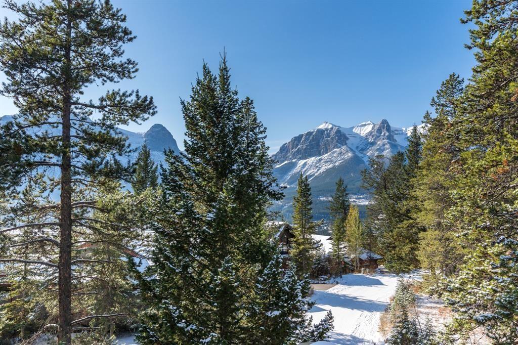 Amazing mountain views!