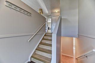 Photo 8: 19 Falshire Close NE in Calgary: Falconridge Detached for sale : MLS®# A1121159