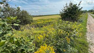 Photo 4: Lot Fitch Road in Clarence East: 400-Annapolis County Vacant Land for sale (Annapolis Valley)  : MLS®# 202121703