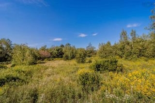 Photo 5: Lot Highway 201 in Round Hill: 400-Annapolis County Vacant Land for sale (Annapolis Valley)  : MLS®# 202123614