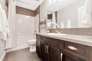 Photo 27: 125 COPPERPOND Green SE in Calgary: Copperfield Detached for sale : MLS®# C4299427