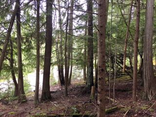 Photo 11: 3,4,6 Armstrong Road in Eagle Bay: Vacant Land for sale : MLS®# 10133907