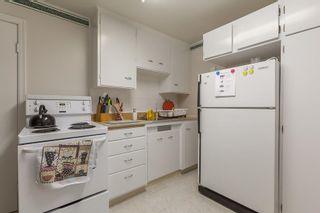 Photo 20: 8735 92B Avenue in Edmonton: Zone 18 House for sale : MLS®# E4249129