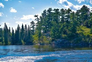 Photo 7: Lot 8 Five Point Island in South of Kenora: Vacant Land for sale : MLS®# TB212085