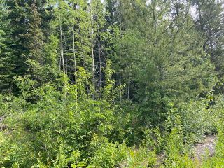 "Photo 4: LOT 6 CHIEF LAKE Road in Prince George: Nukko Lake Land for sale in ""CHIEF LAKE"" (PG Rural North (Zone 76))  : MLS®# R2464872"