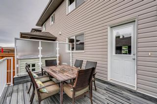 Photo 42: 217 CHAPARRAL VALLEY Drive SE in Calgary: Chaparral Semi Detached for sale : MLS®# A1119212