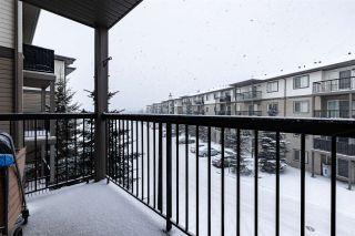 Photo 27: 304 1188 HYNDMAN Road in Edmonton: Zone 35 Condo for sale : MLS®# E4248234