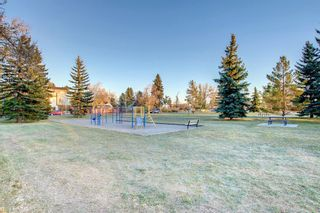Photo 47: 456 18 Avenue NE in Calgary: Winston Heights/Mountview Detached for sale : MLS®# A1153811