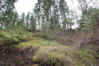 Photo 19: 2388 Waverly Drive: Blind Bay Vacant Land for sale (South Shuswap)  : MLS®# 10201100