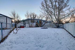 Photo 25: 3210 30A Avenue SE in Calgary: Dover Semi Detached for sale : MLS®# A1055012