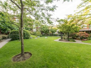 """Photo 18: 245 15 SIXTH Avenue in New Westminster: GlenBrooke North Townhouse for sale in """"CROFTON"""" : MLS®# R2074537"""