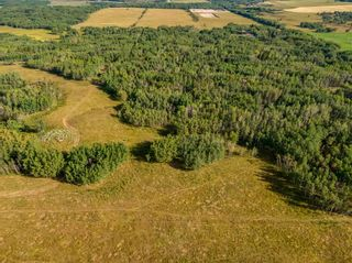 Photo 3: Lot 4 Range Road 33 in Rural Rocky View County: Rural Rocky View MD Residential Land for sale : MLS®# A1134552