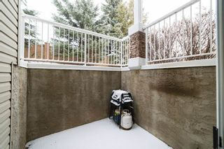 Photo 22: 11A 79 Bellerose Drive: St. Albert Carriage for sale : MLS®# E4235222