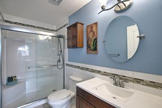 Photo 24: 73 Canals Circle SW: Airdrie Detached for sale : MLS®# A1104916
