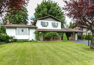 Photo 1: 12317 GRAY Street in Maple Ridge: West Central House for sale : MLS®# R2179339