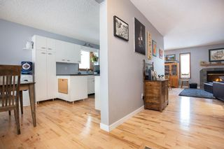 Photo 3: 309 Thibault Street in Winnipeg: St Boniface Residential for sale (2A)  : MLS®# 202008254