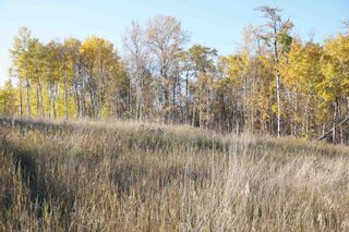Photo 8: 14 53214 RR13: Rural Parkland County Rural Land/Vacant Lot for sale : MLS®# E4266456