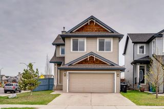 Photo 1: 1571 COPPERFIELD Boulevard SE in Calgary: Copperfield Detached for sale : MLS®# A1107569