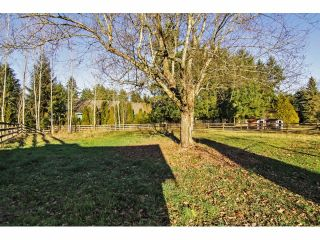 """Photo 20: 24697 48B Avenue in Langley: Salmon River House for sale in """"STRAWBERRY HILLS"""" : MLS®# F1326525"""