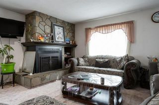Photo 4: 245 Cornish Road, in Kelowna: Agriculture for sale : MLS®# 10235331