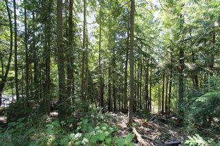 Photo 2: Lot 127 Vickers Trail: Land Only for sale : MLS®# 10071267