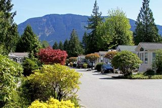 """Photo 7: 207 14600 MORRIS VALLEY Road in Mission: Lake Errock Land for sale in """"Tapadera Estates"""" : MLS®# R2373865"""