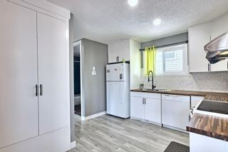 Photo 9:  in Calgary: Edgemont Detached for sale : MLS®# A1126277