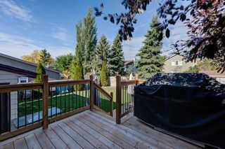 Photo 45: 12 Willowbrook Crescent: St. Albert House for sale : MLS®# E4264517