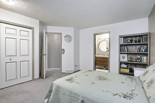 Photo 28: 144 Martinwood Court NE in Calgary: Martindale Detached for sale : MLS®# A1126396