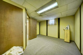 Photo 37: 16038 94A Avenue in Edmonton: Zone 22 House for sale : MLS®# E4266489