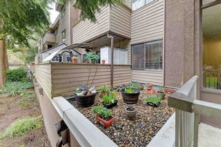 Photo 20: 3 2439 KELLY AVENUE in Port Coquitlam: Central Pt Coquitlam Home for sale ()  : MLS®# R2555105