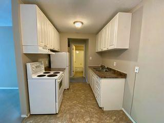 Photo 8: 305 10330 113 Street in Edmonton: Zone 12 Condo for sale : MLS®# E4250079