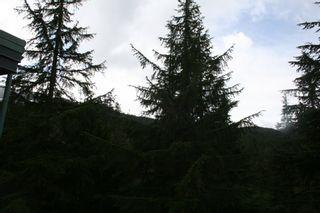 "Photo 10: FP4 1400 Alta Lake Road: Whistler Condo  in ""Tamarisk"""