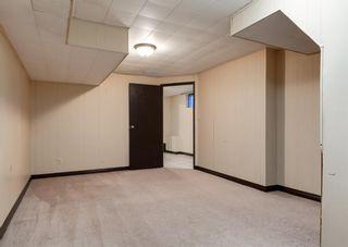 Photo 34: 11039 166 Avenue: Edmonton Detached for sale : MLS®# A1083224