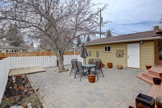 Photo 47: 5915 34 Street SW in Calgary: Lakeview Detached for sale : MLS®# A1093222