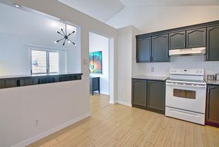 Photo 17: 66 Erin Green Way SE in Calgary: Erin Woods Detached for sale : MLS®# A1094602