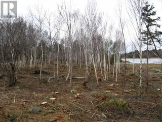 Photo 11: Lot East Port Loop Road in East Port Medway: Vacant Land for sale : MLS®# 202000583