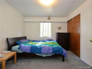 Photo 11: 3631 Crestview Rd in VICTORIA: OB Henderson House for sale (Oak Bay)  : MLS®# 712207