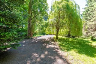 Photo 55: 785 Evergreen Rd in : CR Campbell River Central House for sale (Campbell River)  : MLS®# 877473
