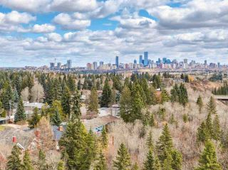 Photo 31: 14354 PARK Drive in Edmonton: Zone 10 House for sale : MLS®# E4222952