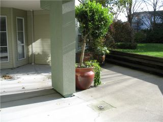 Photo 19: # 204 20110 MICHAUD CR in Langley: Langley City Condo for sale : MLS®# F1426590