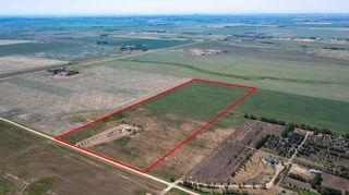 Photo 5: 254141 Range Road 274: Delacour Detached for sale : MLS®# A1126301