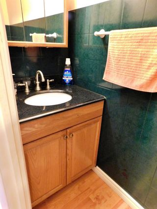 Photo 16: 35 Birch Drive: Gibbons House for sale : MLS®# E4249025