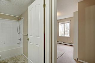 Photo 19: 309 4000 Somervale Court SW in Calgary: Somerset Apartment for sale : MLS®# A1100691
