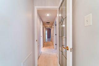 Photo 33: 409 14810 51 Avenue in Edmonton: Zone 14 Condo for sale : MLS®# E4263309