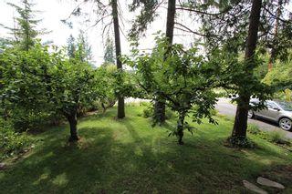 Photo 32: 5227 Tallington Drive in Celista: North Shuswap House for sale (Shuswap)  : MLS®# 10114293