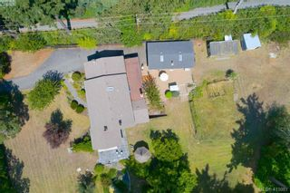 Photo 33: 4221 Glendenning Rd in VICTORIA: SE Blenkinsop House for sale (Saanich East)  : MLS®# 821064