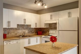 Photo 13: 107 3000 Citadel Meadow Point NW in Calgary: Citadel Apartment for sale : MLS®# A1070603