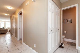 """Photo 36: 146 14154 103 Avenue in Surrey: Whalley Townhouse for sale in """"Tiffany Springs"""" (North Surrey)  : MLS®# R2447003"""